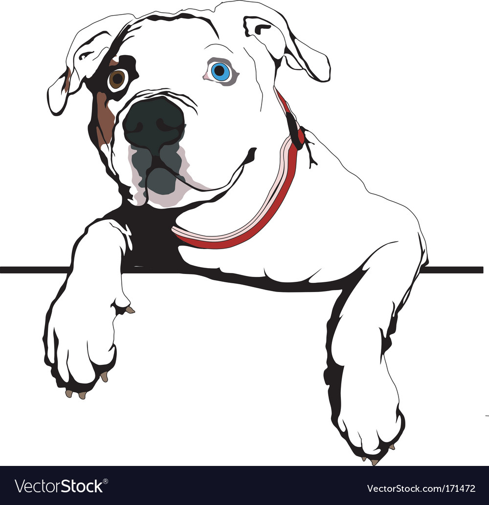 Curious bulldog vector