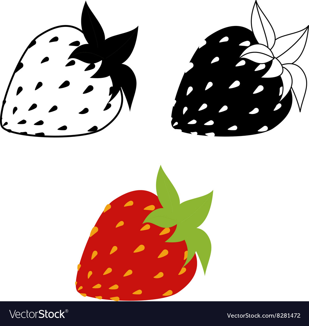 Strawberries isolated on white vector