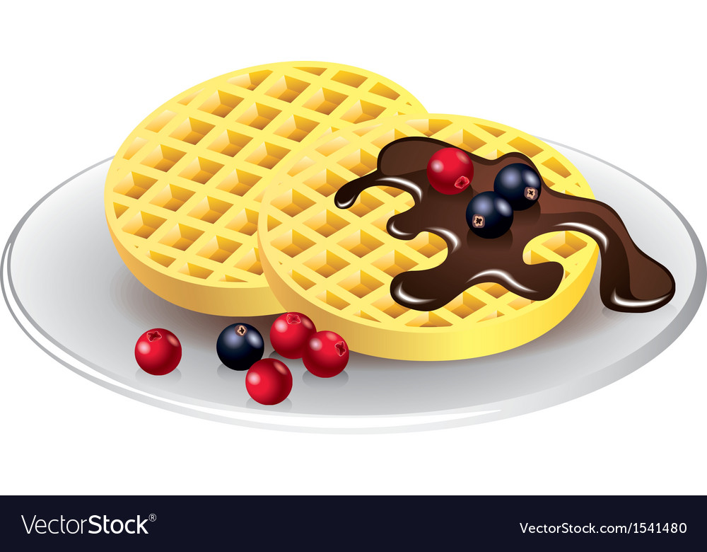 Belgian waffles with chocolate and berries vector
