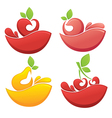 fruits and juice vector image vector image