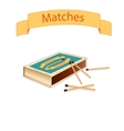 Matchboxes and matches vector image