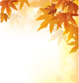 Beautiful autumn yellow background vector image