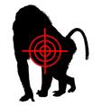 Baboon crosslines vector image
