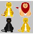 Panthera vector image