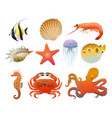 cartoon sea fauna elements set vector image