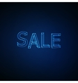 Sale Neon 3D sign vector image