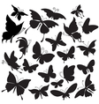set of silhouettes of butterflies vector image vector image