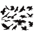 Silhouette of eagles vector image