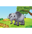 An elephant jumping inside the wooden fence vector image vector image