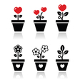 Heart in flower pot icons set vector image