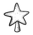 Christmas decoration star vector image