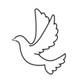 dove of peace flying vector image