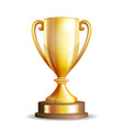 Golden trophy cup vector image
