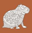 capybara fashion vector image