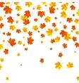 Falling autumn leaves background vector image