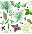 seamless pattern with herbs and spices vector image vector image