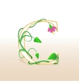 Letter C with an vintage floral pattern vector image