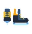Ice skates vector image