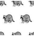 hand drawn background with raccoon vector image