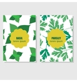 Concept for packing design with aromatic herbs and vector image