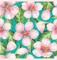 apple flowers petals and leaves in watercolor vector image