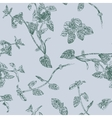 Seamless floral pattern with peppermint sprigs vector image
