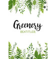 Floral greenery vertical card design forest fern vector image