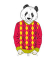 panda boy in colorful clothes vector image
