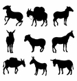Donkeys Silhouette detailed vector image