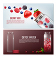 detox beverages horizontal banners vector image