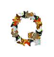 letter q cat font pet alphabet symbol home animal vector image