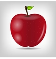 Sweet tasty apple vector image vector image