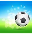flying soccer ball vector image