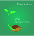 seeds are germinating environmental symbol vector image