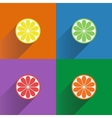 Collection of four citrus fruits icons in flat vector image