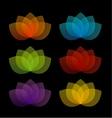 Graceful lotus with 5 petals vector image vector image