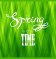 spring lettering design green banner vector image