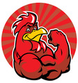 muscle rooster show his arm vector image
