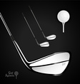 Golf ball and golf stick on the dark background vector image