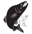 fish humpback vector image