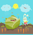 little rabbit and cabbage field vector image