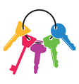 colourful house keys vector image vector image