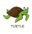 Cute happy cartoon turtle swimming vector image