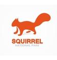 squirrel logo or icon vector image