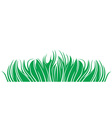 Grass Herbage vector image