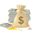Piles of money vector image