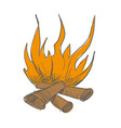 the bonfire burns vector image