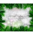Elegant Classic Christmas Background with baubles vector image vector image