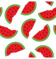 watermelon pattern vector image vector image