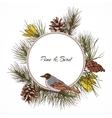 Bird pine branch label vector image